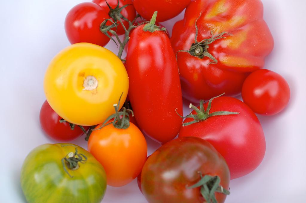 Помидоры Для Похудения Ног. Помидоры для похудения: польза и вред. Можно ли есть помидоры при похудении?