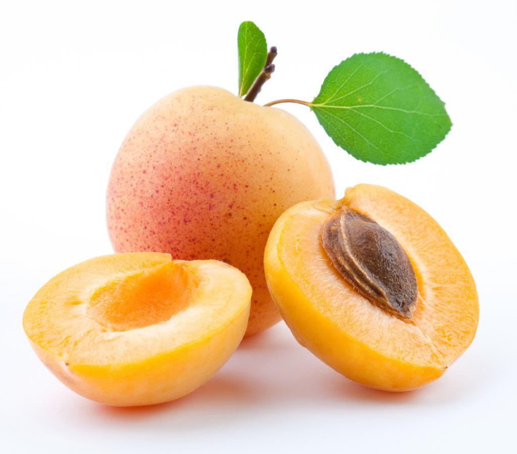 Польза и вред абрикосовых ядрышек